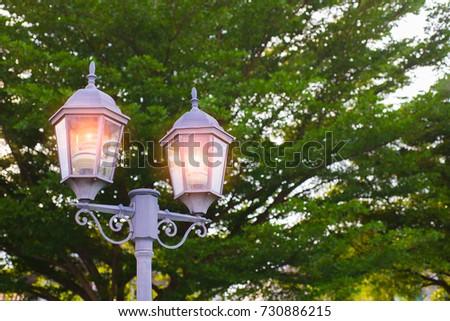 garden lights in a beautiful...