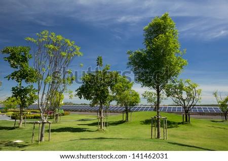 garden near solar cell park with blue sky