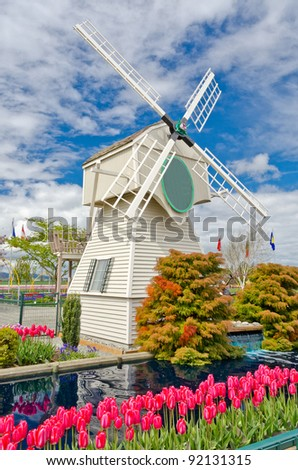 Garden of tulips with windmill and beautiful pond at Skagit, Washington State, America.