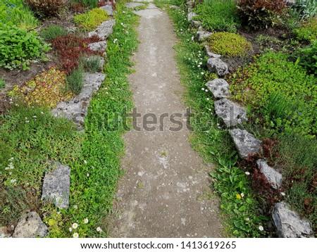 Garden path, summer path, wild path #1413619265