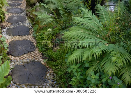 Garden path way with under tree decoration