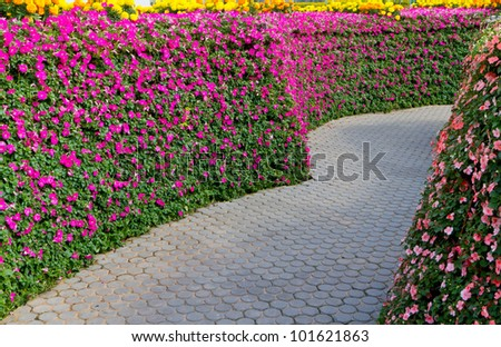 garden path with beautiful pink flowers