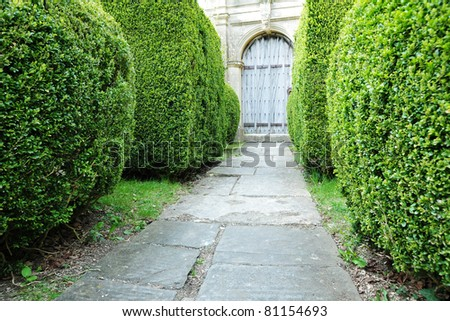 Garden Path with Topiary Landscaping