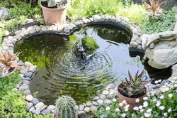 Garden pond with fountain