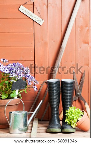 Garden potting shed with Senetti flowers in terracotta pot with watering can and tools