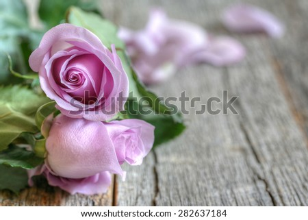 Garden purple roses bouquet on rustic wooden table side view with copy space