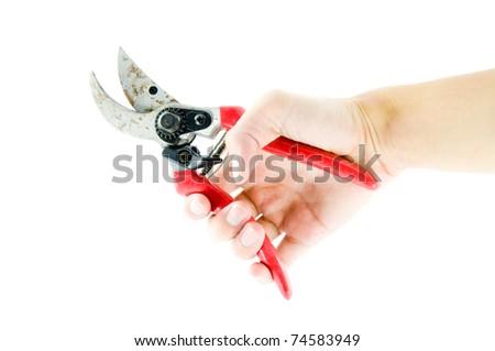 Garden scissors in hand - stock photo