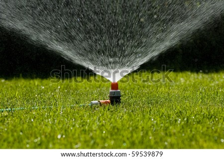 Garden sprinkler on a sunny summer day during watering the green lawn in garden - stock photo
