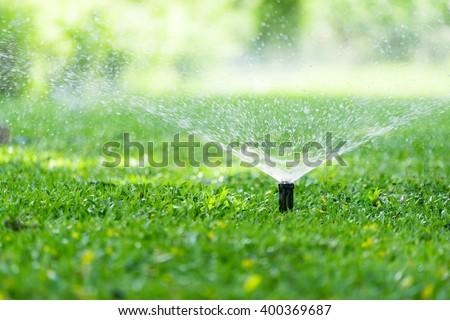 Garden Sprinkler Watering Grass. Automatic Sprinklers, Lawn Sprinkler in Action, Background Concept.