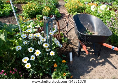 Garden still life with flowers and vegetables, a wheelbarrow, and hoses and water spickets.