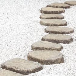 Garden stone nature