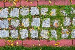 Garden stone path with red bricks, green grass. Cobblestoned pavement background. Stone pavement texture. Cobbled stone road. Old cobblestone pavement, close up