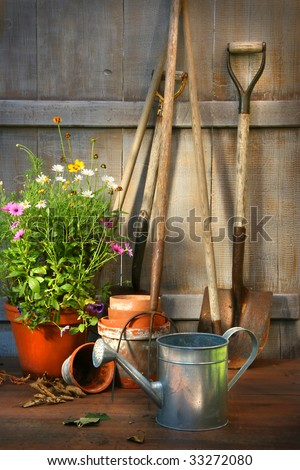 Garden tools and a pot of summer flowers in garden shed