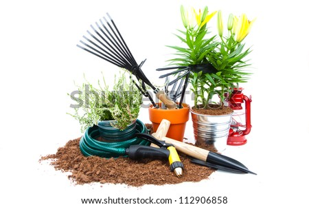 garden tools and plants