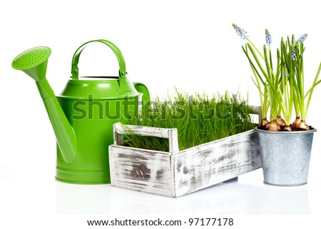 Garden tools and watering can with grass on white - stock photo