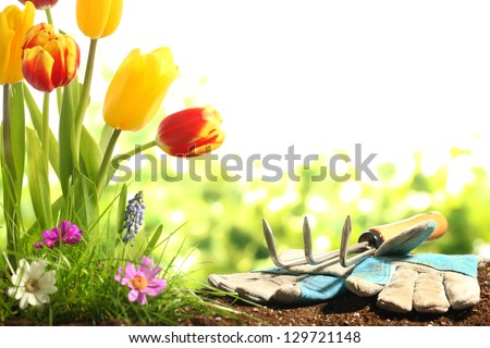 Garden tools,green grass and flowers