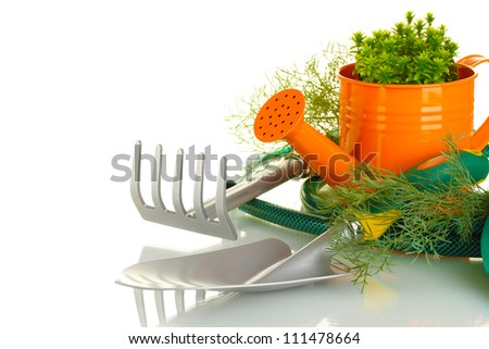 garden tools on white background close-up