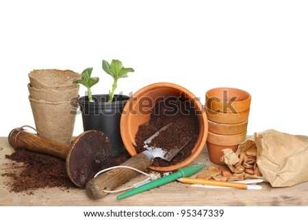Garden tools, terracotta plant pots, soil, seeds and a seedling plant on a wooden potting bench