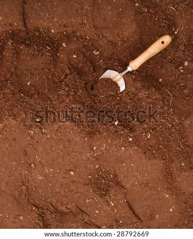 garden trowel in rich garden soil