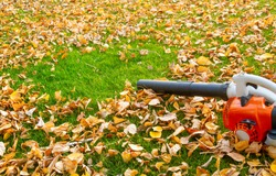 Garden vacuum cleaner on a lawn with yellow leaves on a sunny day.