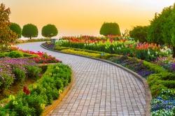 Garden walk way with sunrise in morning.