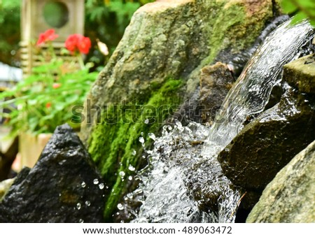 Garden waterfall with red flowers in the background