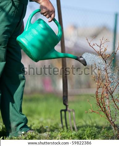 Garden watering - stock photo