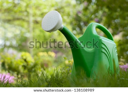 Garden watering can in the garden on a background of green foliage