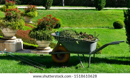 Garden-wheelbarrow filled with the herbs collected after the gardener's work in a park. gardening tools.