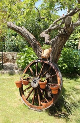 Garden with ornamental cart wheel with pots and plants. View of garden with wagon wheel and flowers, allegory of peace, of tranquility, of rest, of harmony, of calm, of freshness, of summer,