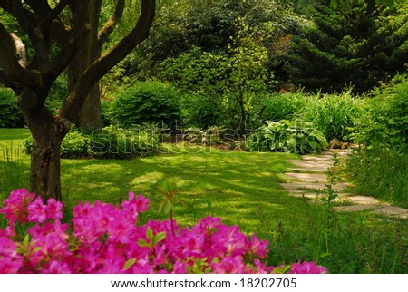 Garden with Rhododendron