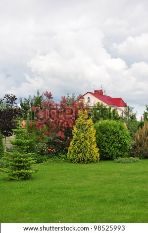 garden with small pine trees in front of a villa house