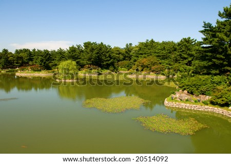 Garden with trees and pond