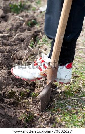 Gardener digging with garden spade - stock photo