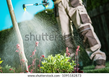 Gardener Fighting Insects in the Garden by Insecticide Whole Backyard Garden. Foto d'archivio ©