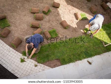 Gardener Installing Natural Grass Turfs Creating Beautiful Lawn Field