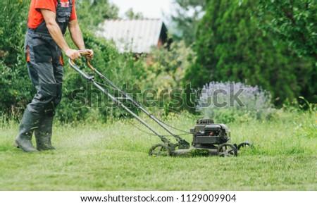 Gardener mowing grass lawn using lawnmower #1129009904