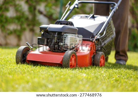 Gardener mowing the lawn at backyard