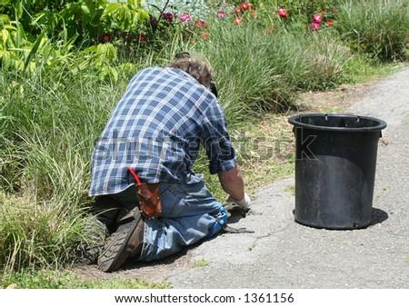 Gardener planting a plant