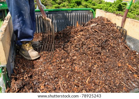 Gardener standing in trailer full of mulch