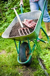 gardener with a wheelbarrow full of humus in the garden