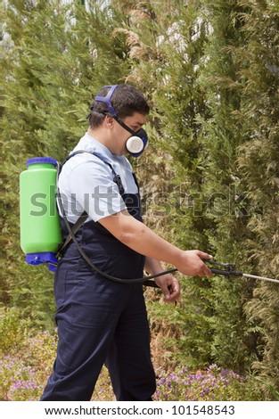 gardener working in the yard with garden spray