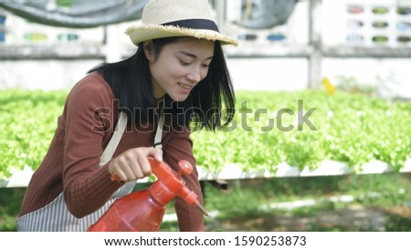 Gardeners watering vegetables in the garden.