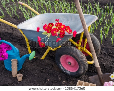 Gardening and gardening tools in the garden. Garden car #1385417360