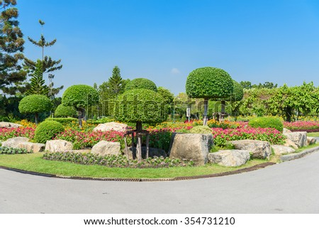 Gardening and Landscaping With Decorative Trees and Plants #354731210