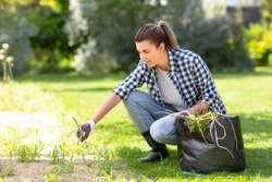 gardening and people concept - happy smiling woman with bag weeding flowerbed at summer garden