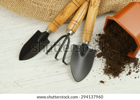 Gardening concept, gardening tools on old white table