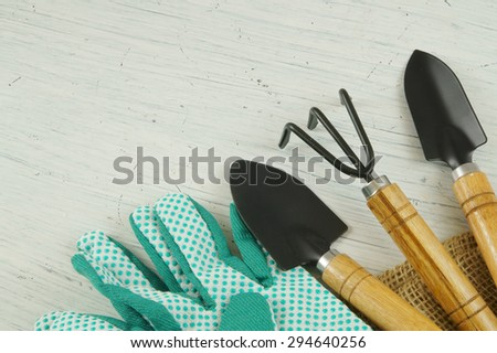 Gardening concept, gardening tools on old white table with room for text
