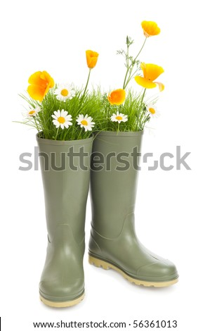 Gardening concept with flowers and grass sprouting from wellington boots