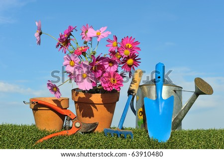 Gardening concept with tools and watering can